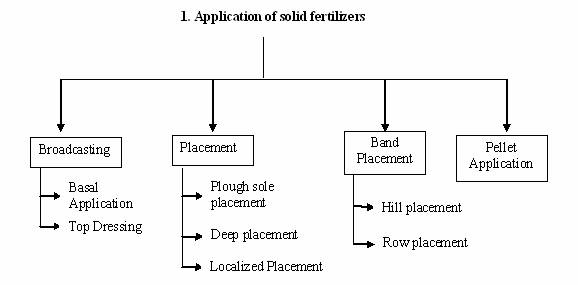 Fertilizer Application