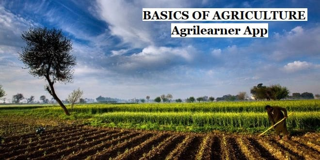 Agriculture One Liner Question