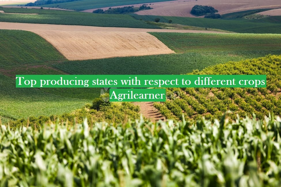 Top crops producing states