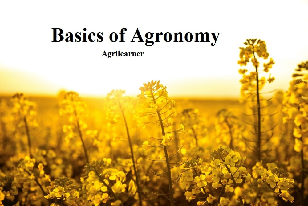 Basics of Agronomy