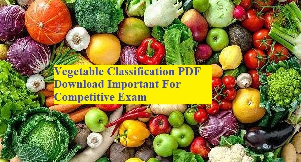 Vegetable Classification PDF Download