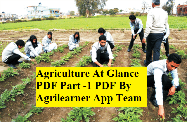 Agriculture At Glance PDF