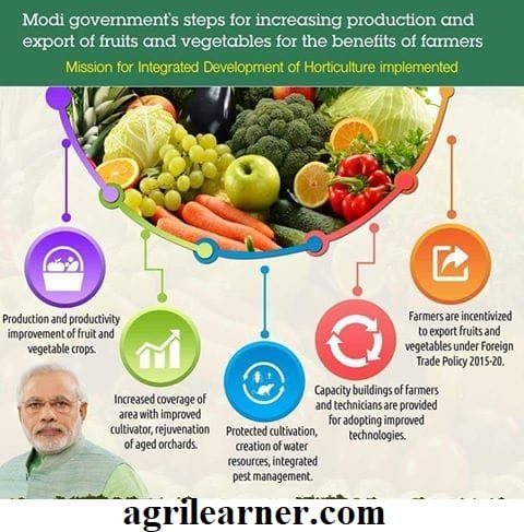 Mission for Integrated Development of Horticulture (MIDH)