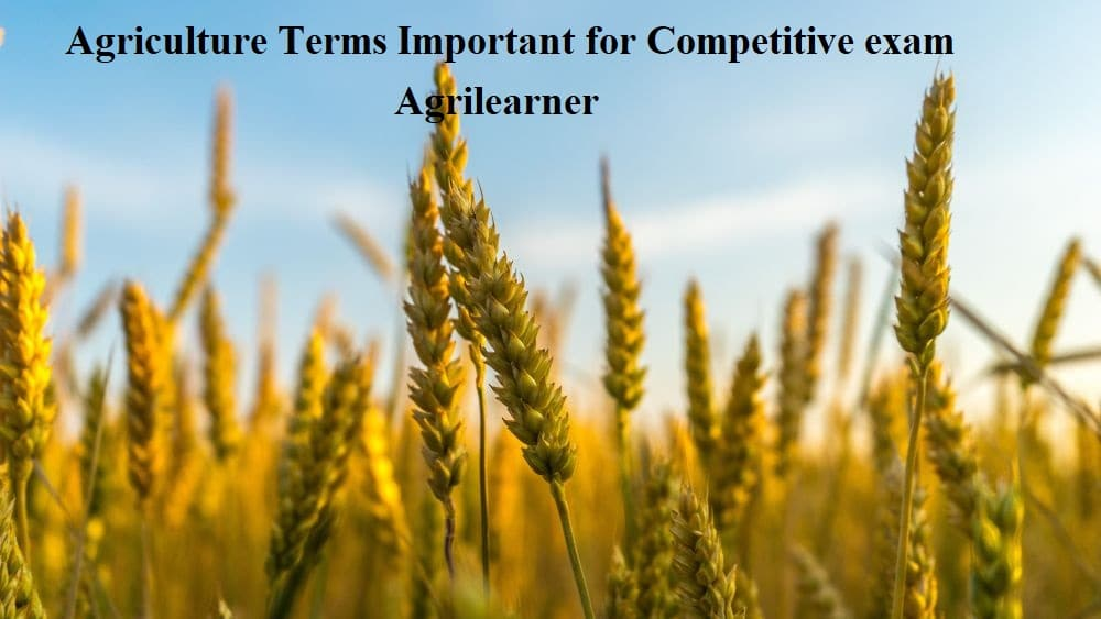 Agriculture Terms