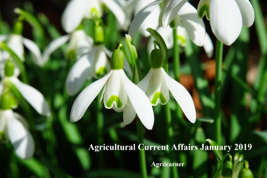 Agricultural Current Affair