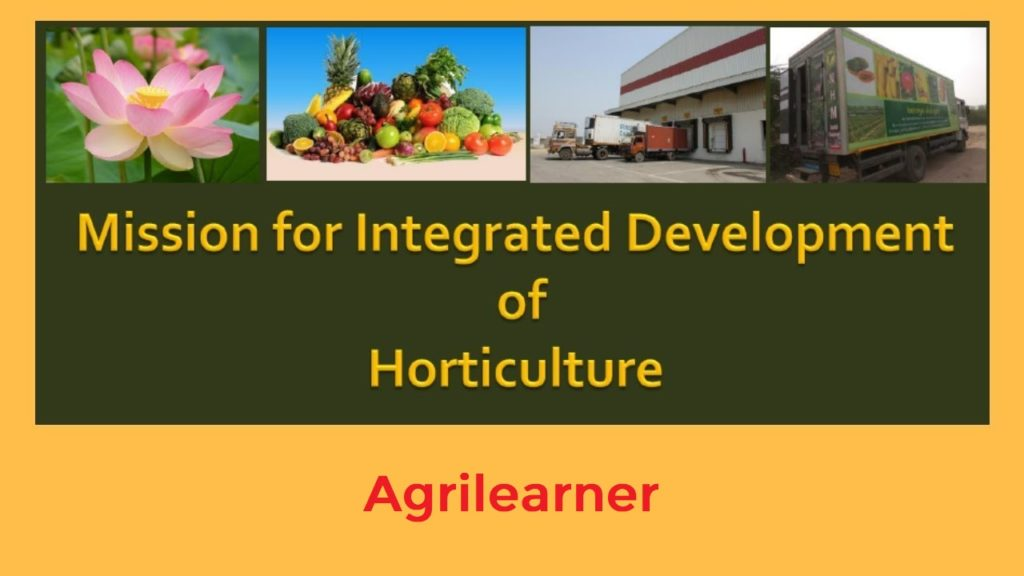 Integrated Development of Horticulture