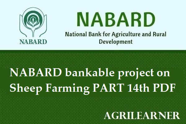 NABARD bankable Project