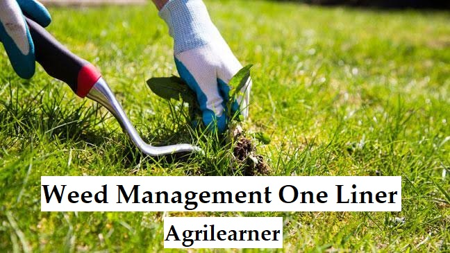 Weed Management One Liner