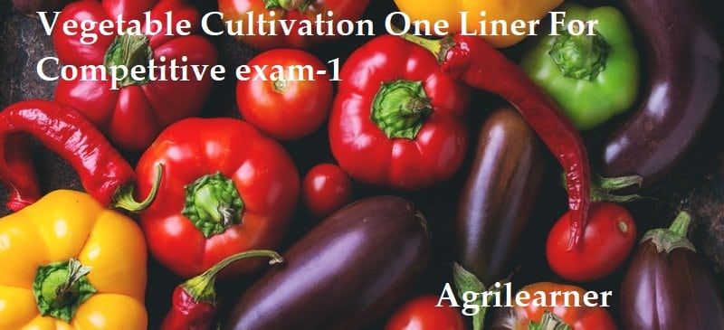Vegetable Cultivation One Liner