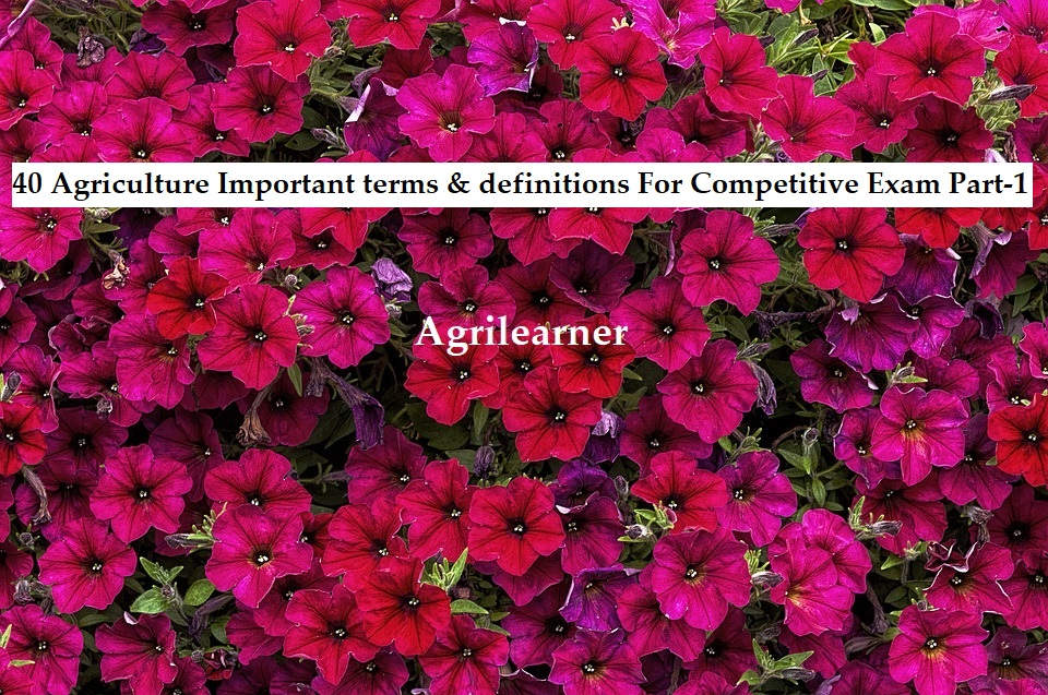 Agriculture terms & definitions