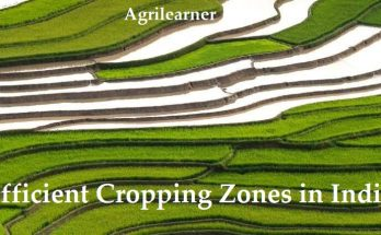 Cropping Zones