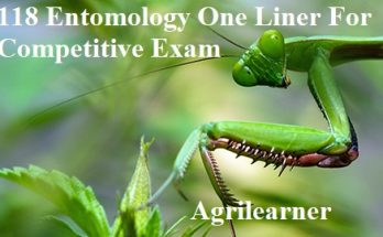 Entomology One Liner