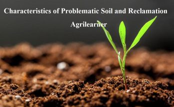 Problematic Soil